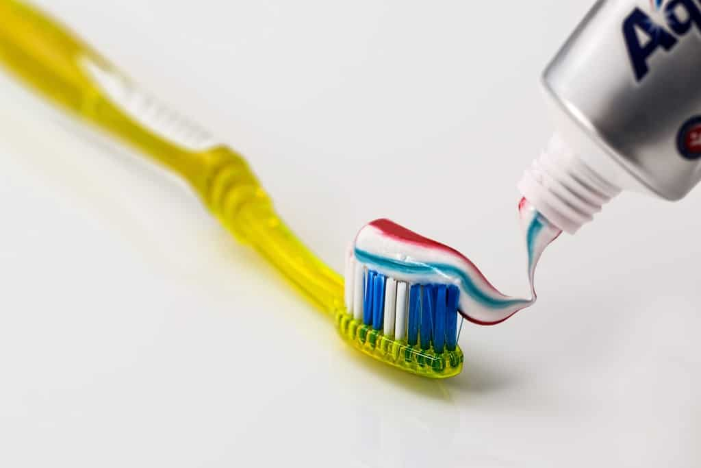 Zähne putzen lernen